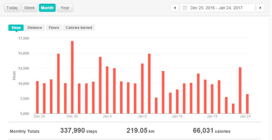 TLY_Fitbit1