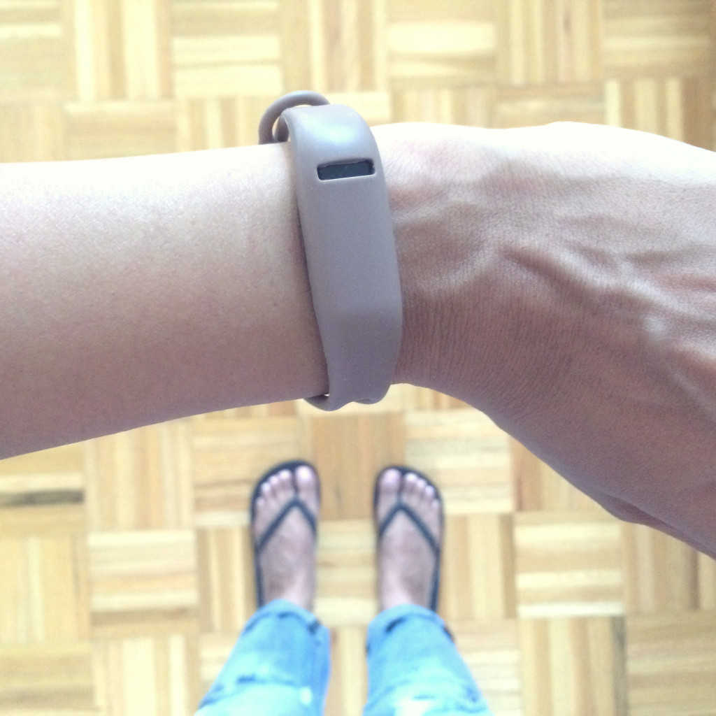 TLY_FitbitUpdate3